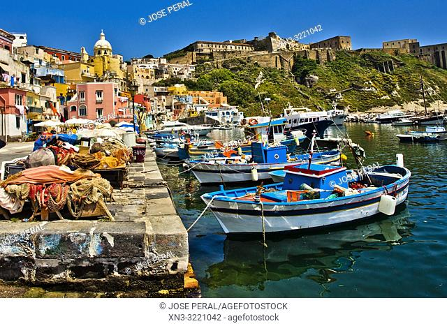 Procida, Phlegraean Islands, Gulf of Naples, Bay of Naples, Italy, Europe