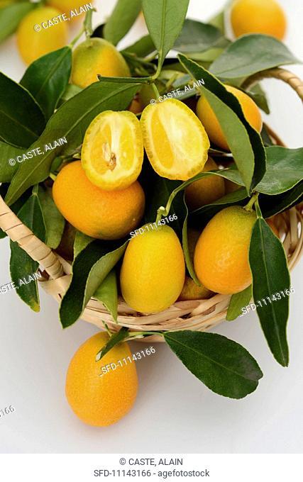 Kumquats on a sprig, one halved