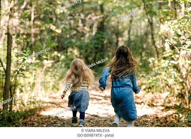 Sisters running in forest