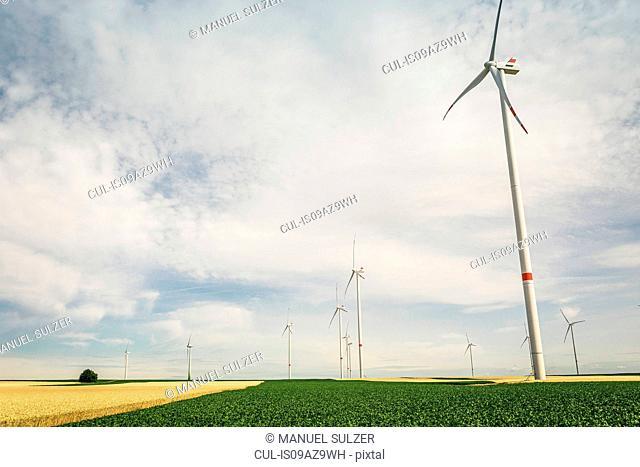 Wind farm, Pfalz, Germany