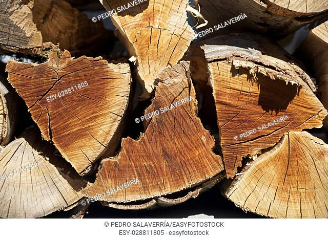 Group of cut logs for firewood