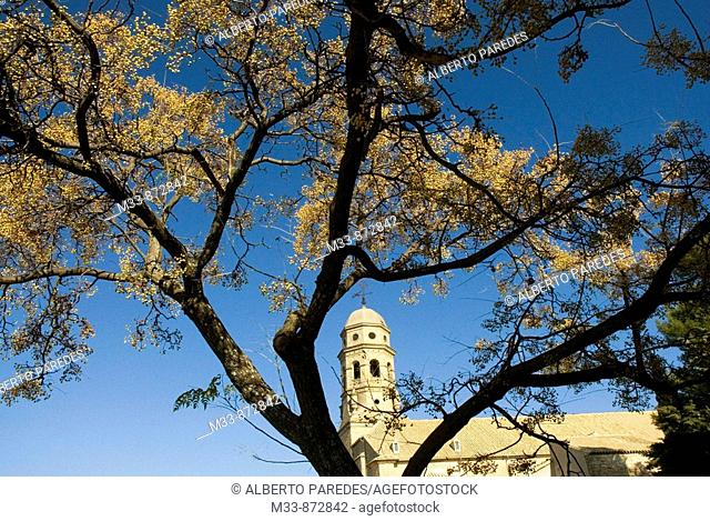 Cathedral, Baeza. Jaen province, Andalusia, Spain