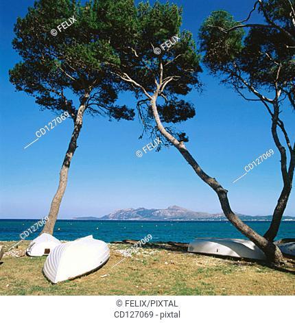 Pollensa. Majorca. Balearic Islands. Spain