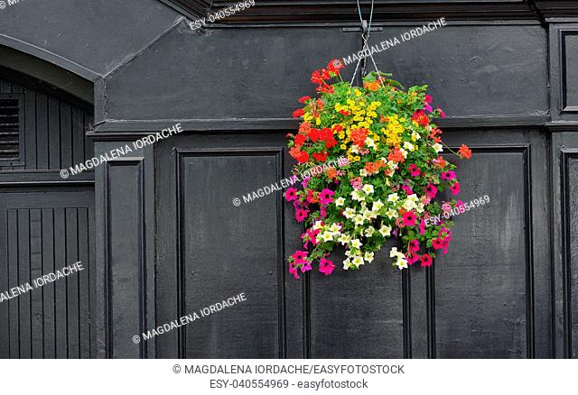 Flowers on Traditional Irish pub facade
