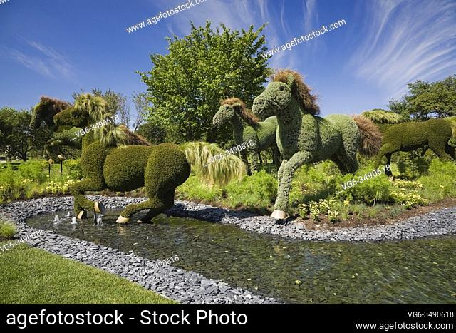 Living plant galloping horse sculptures belonging to the exhibit called 'Mother Earth' created on metal mesh forms filled with earth and planted with various...