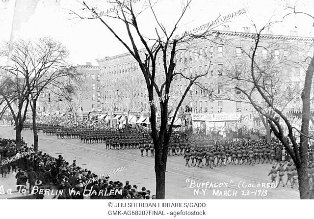 Large group of African-American Buffalo Soldiers marching through Harlem on a parade, with bystanders observing, during World War 1, Harlem, new York, March 23