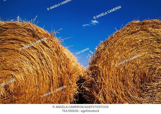 Two hay bales side by side