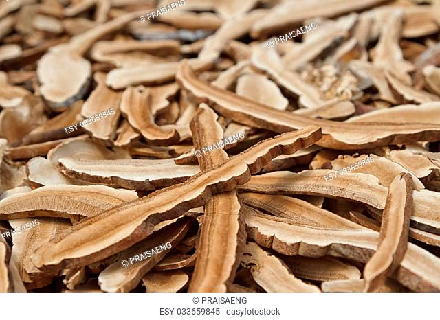 Reishi mushroom, Dry mushroom for herbal medicine