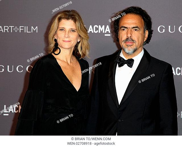 Celebrities attend 2017 LACMA Art + Film Gala Honoring Mark Bradford and George Lucas presented by Gucci at LACMA. Featuring: María Eladia Hagerman