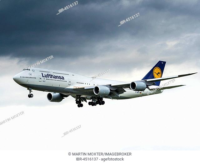 Lufthansa Boeing 747 in the landing approach, Frankfurt am Main, Hesse, Germany