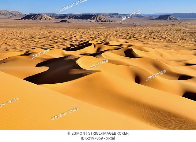Morning light on sand dunes at Erg Tihoulahoun, Immidir, Algeria, Sahara, North Africa