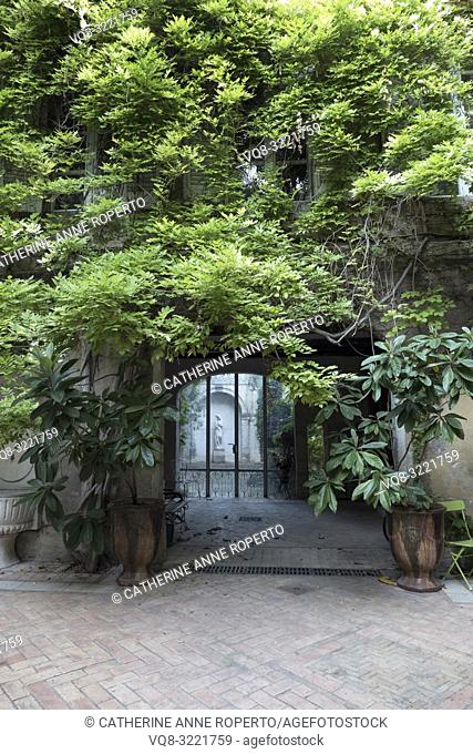 Historic tiled courtyard with wisteria draped archway leading to classical female statue in white marble, L'Isle-sur-la-Sorgue; Vaucluse; Provence; France