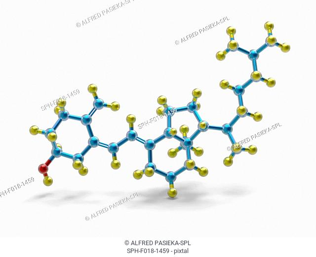 A molecular model of vitamin D3 (cholecalciferol), a form of vitamin D synthesized in the skin as a result of ultraviolet B light