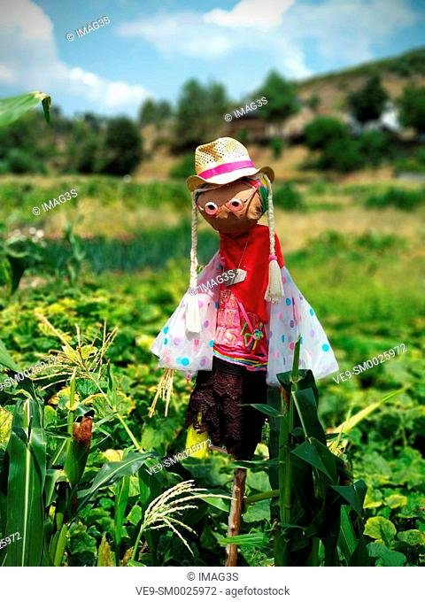 Scarecrow in a field, Rio de Onor, ancient village on the banks of the Onor River, in Braganca, Portugal