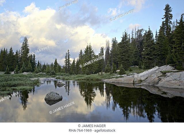 Little Bear Creek at sunrise, Shoshone National Forest, Montana, United States of America, North America