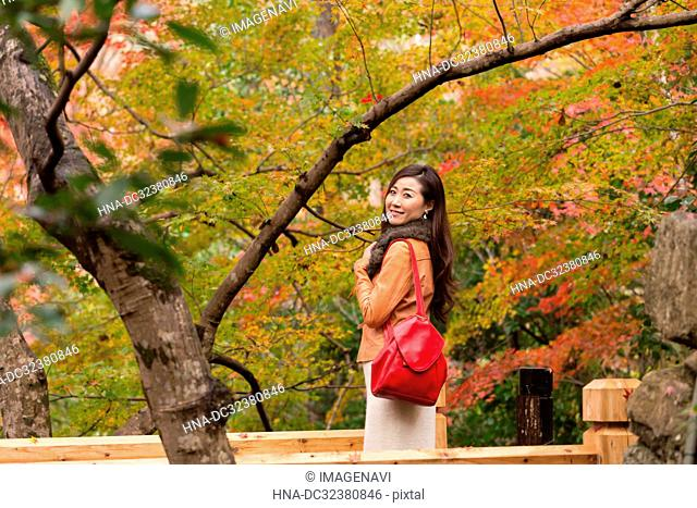 Momijigari in Kyoto