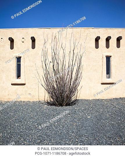 Adobe Building and Ocotillo Cactus