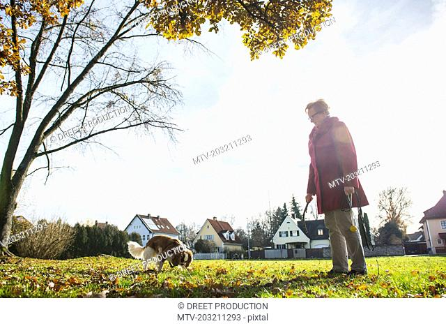 Old woman with pet dog with toy at park