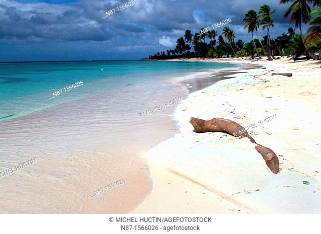Dominican Republic, Saona Island, wild beach