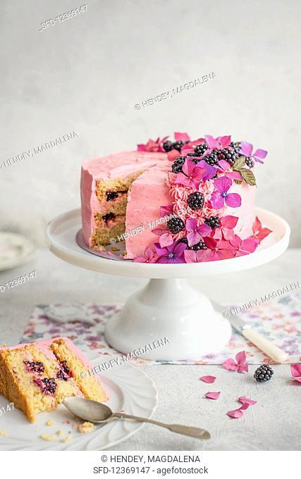 Festive blackberry sponge cake with blackberry cream on a cake stand, sliced