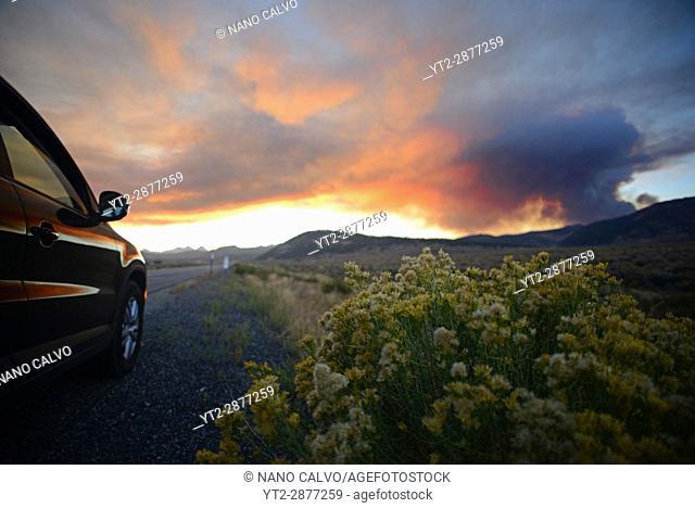 Wildfire in the Yosemite area, California, United States