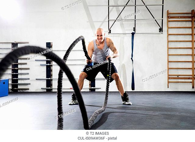Man training with battling ropes in gym