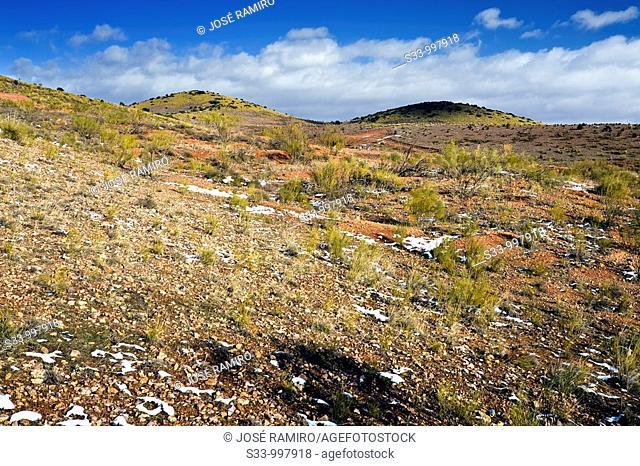 Cerros en Tembleque  Provincia de Toledo  Castilla la Mancha  España