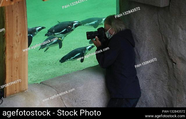 firo 06/04/2020 ZOO, ZOOM Gelsenkirchen The first viewer arrived on time at 9:00 am Popular photo motif of the photographers Pinguin Bay in the ZOOM world of...