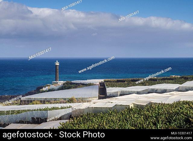 Spain, Canary Islands, La Palma Island, Punta Cumplida, lighthouse and banana plantations