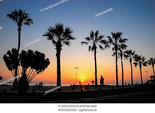 Chile, Region of Tarapaca, Sunset on the Beach Promenade, Iquique