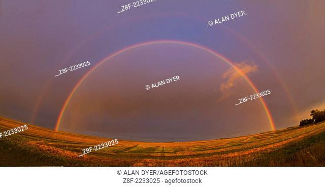 Bright rainbow created by Sun low in west just about to set with raindrops in the air to the east, and light rain falling at the time