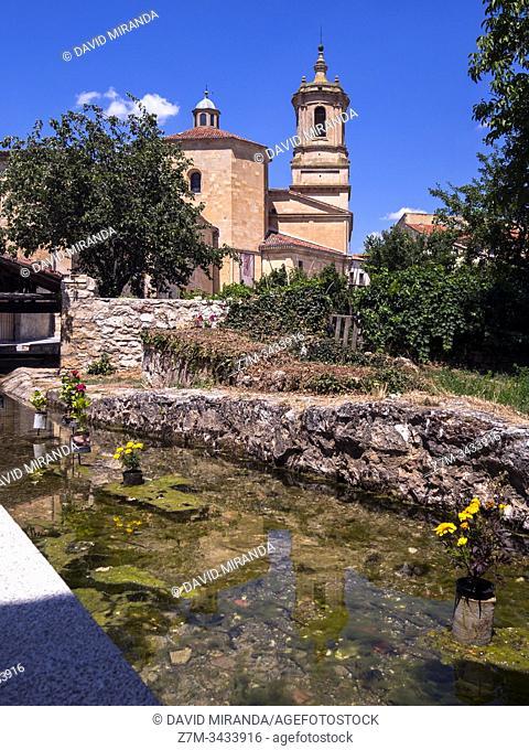 Monasterio de Santo Domingo de Silos. Burgos. Castilla León. España