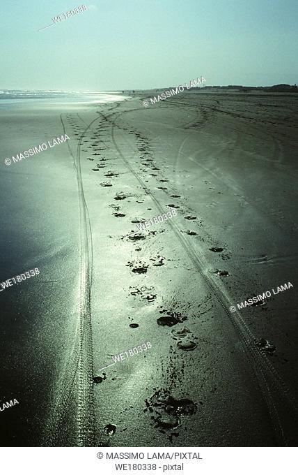 Panangritis beach, near Yogyakarta