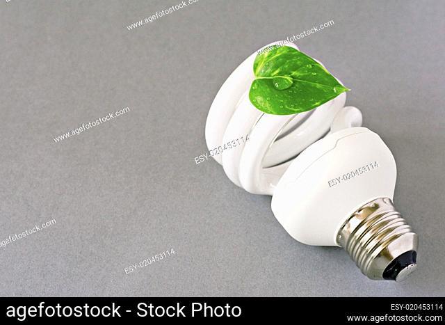 eco lightbulb with green leaf