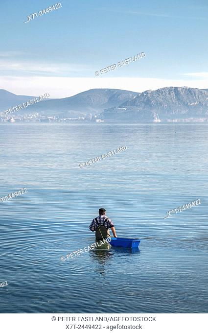 Fishing for octopus in the bay of Nafplio, Argolid, Peloponnese, Greece