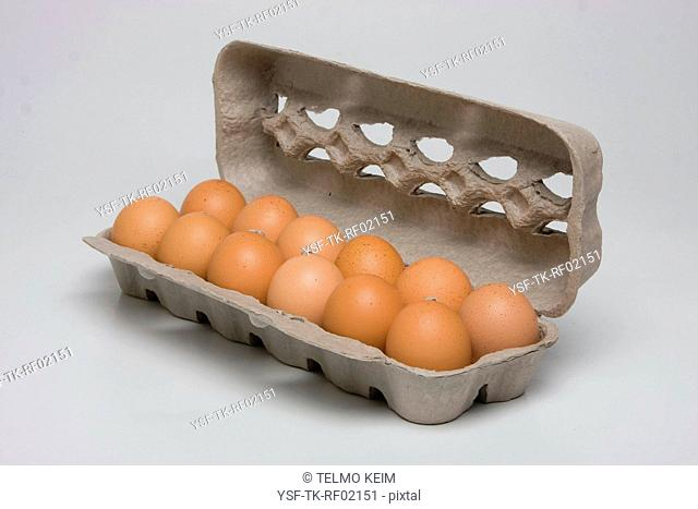 Egg carton, unit, São Paulo, Brazil