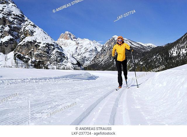Woman cross-country skiing near Schluderbach, Cristallo range, Dolomites, Veneto, Italy