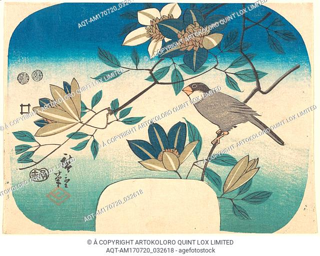 歌川広重画 鉄線花に鳥, Clematis and Bird, Edo period (1615–1868), 1852, Japan, Polychrome woodblock print; ink and color on paper, 6 7/8 x 9 in