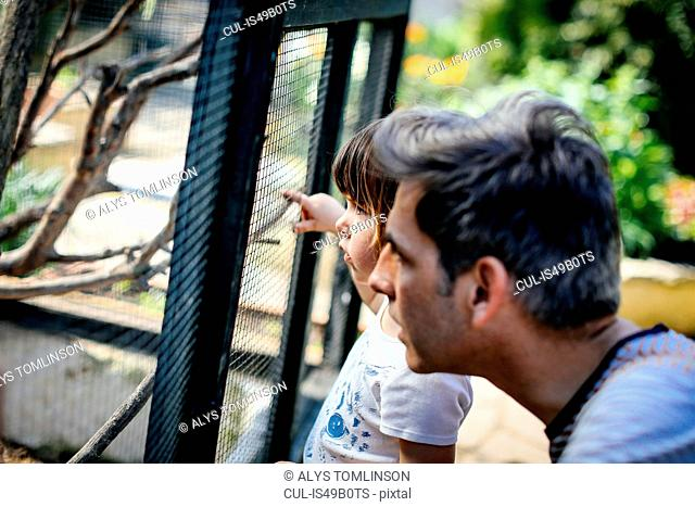 Father and little girl in city farm