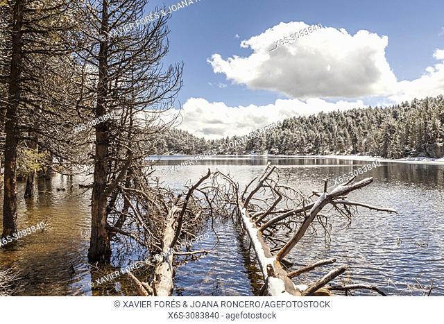 Estane Negre, Lac des Bouillouses area, Pyrénées-Orientales, France