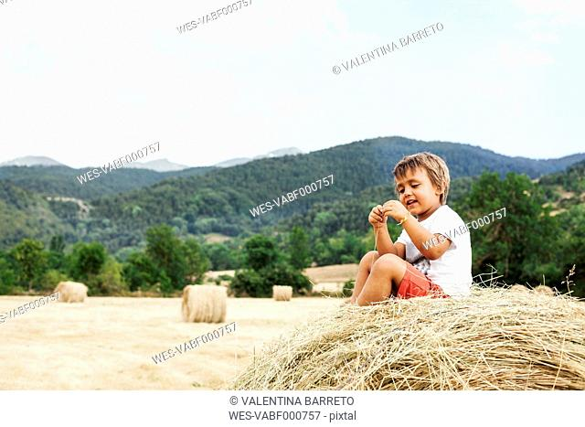 Smiling little boy sitting on bale of straw
