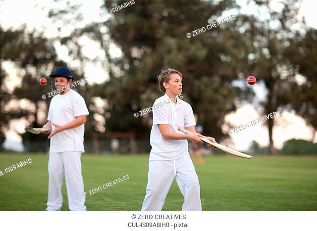 Boys practising hitting cricket ball with bat