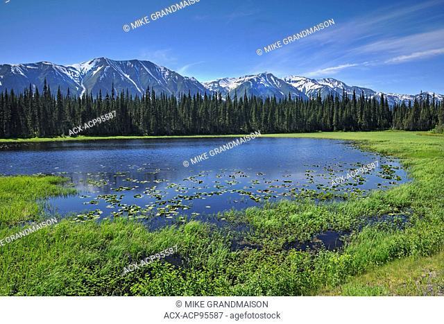 Coast Mountains on the Stewart-Cassiar Highway  Stewart-Cassiar Highway British Columbia Canada