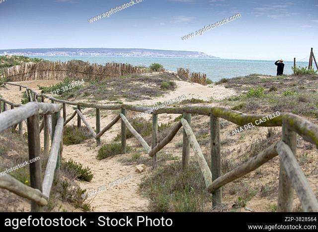 Santa Pola wetlands and salt lagoon bird watching Alicante province Spain