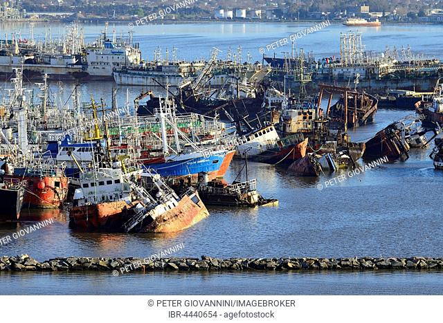 Rusted vessels in the harbor, Montevideo, Uruguay