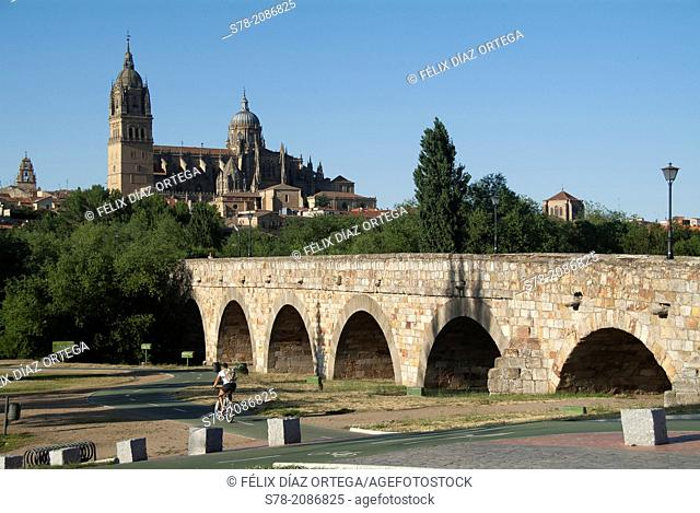 Roman bridge (declared National Monument in 1931), Salamanca, Castilla-Leon, Spain