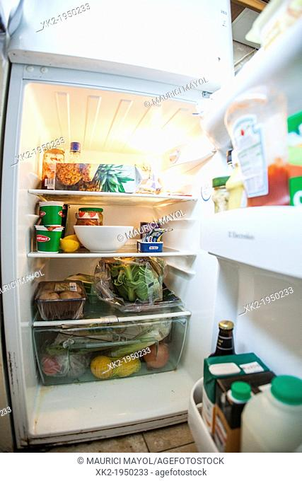Fridge full of food with the door open