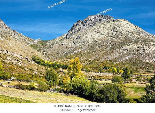 Peña Cabrera en la Sierra de la Paramera  Ávila  Castilla León  España