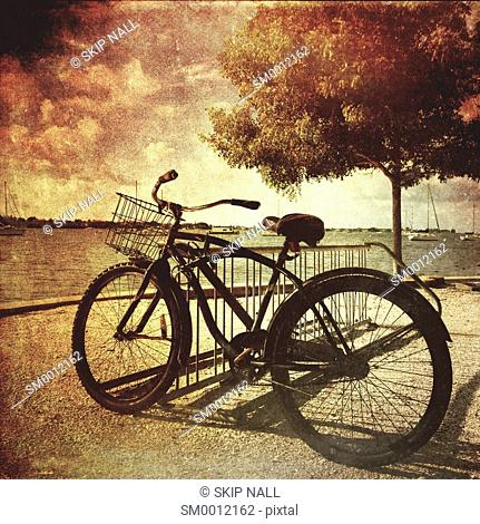 An old bicycle by the bay in Sarasota, Florida