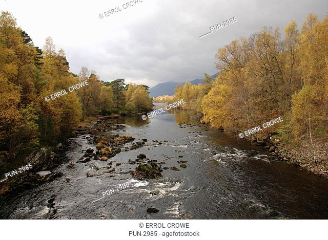 River Affric and trees in autumn, Glen Affric